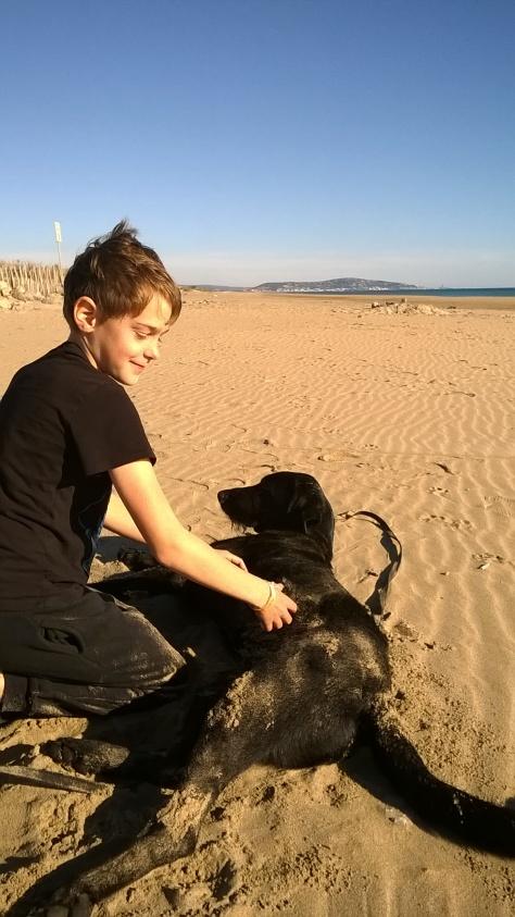 30.11.2015 Torge und Spike spielen glücklich am Strand
